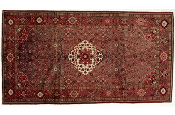 Oriental Collection Hamedan, 165 x 305 cm