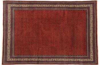 Oriental Collection Teppich, Sarough Mir, Perser, handgeknüpft, reine Schurwolle, 216 x 318 cm