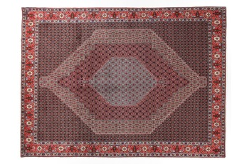 Oriental Collection Senneh 248 cm x 345 cm