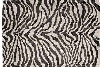 Padiro Teppich Sinai 125 Elfenbein /  Schwarz
