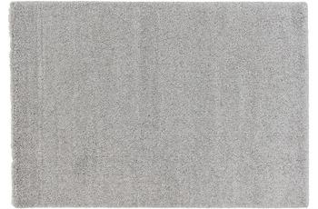 Schöner Wohnen Teppich Energy 160, Farbe 004 silber 67x130 cm
