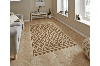 Think Rugs Cottage CT5581 Natural/ Brown 160 x 220 cm