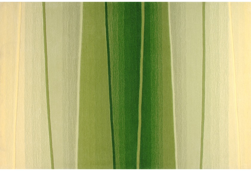 Dino Basic 344 grün