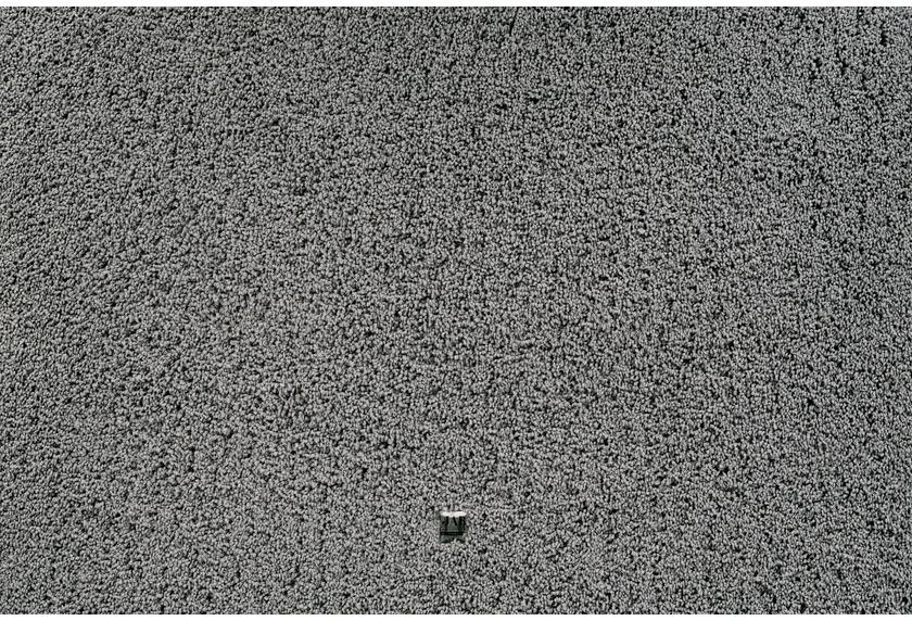 JAB Anstoetz Teppichboden Charmy Plus 3662/426