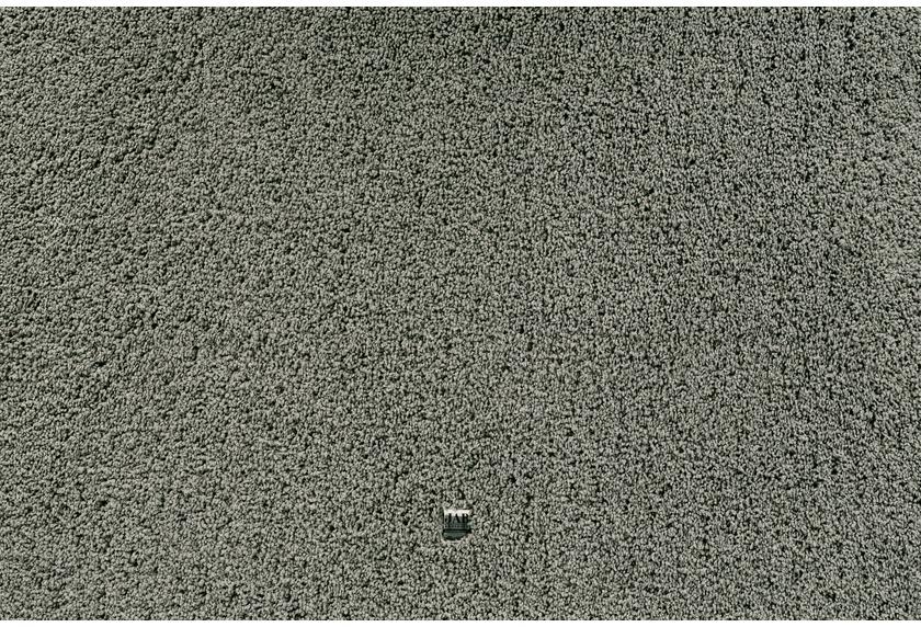 JAB Anstoetz Teppichboden Charmy Plus 3662/590