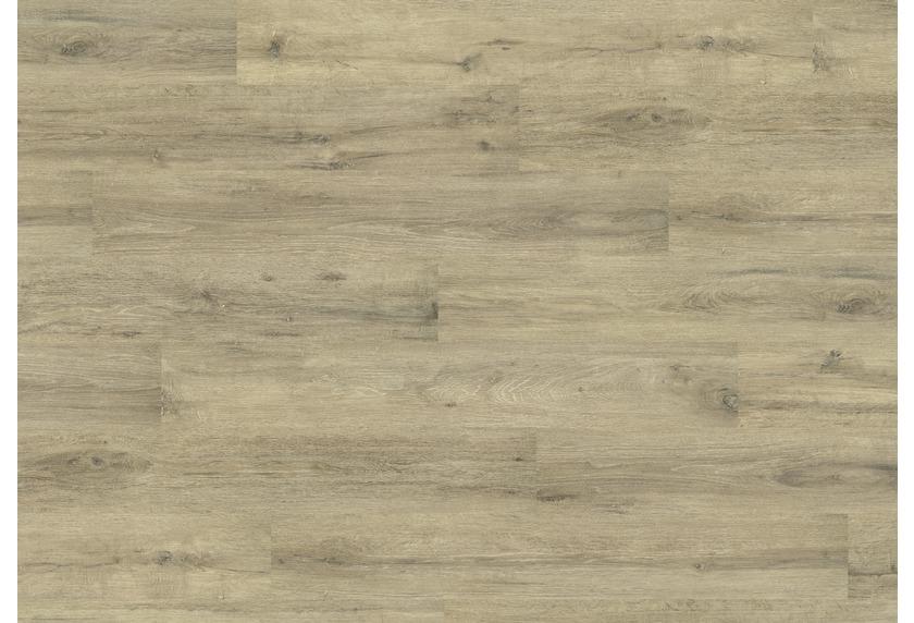 JOKA Laminatboden Madison - Farbe 2803 Eiche polarweiß