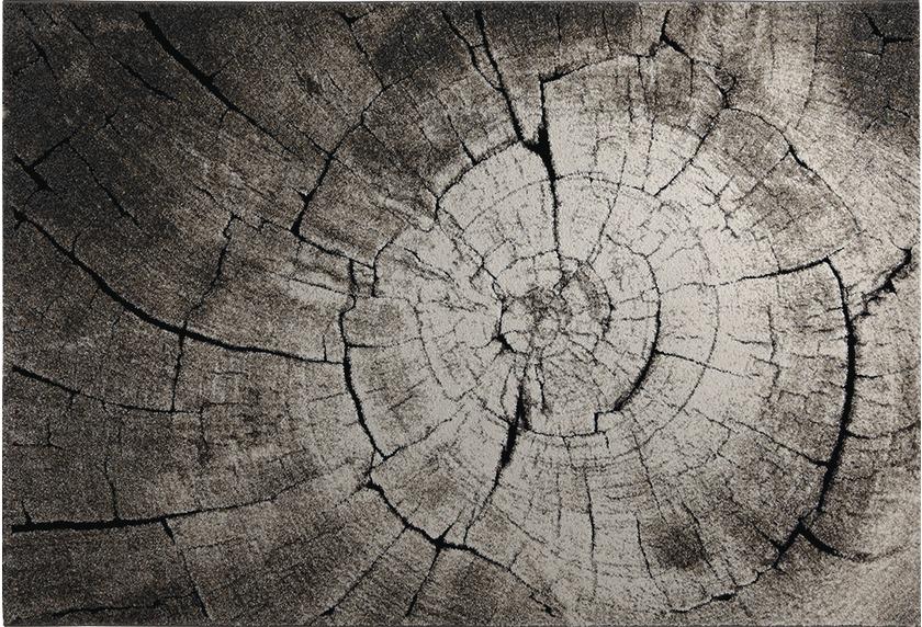 Wecon home Teppich Wild Oak WH-2868-957