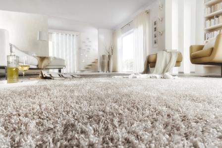 Teppichboden bei TEPGO kaufen